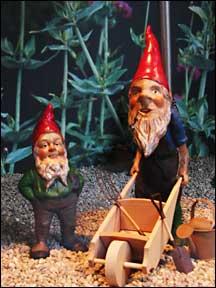gnome3.jpg