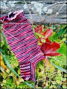 socks_0190.jpg