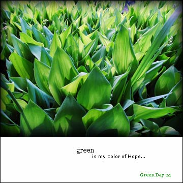 greenday24.jpg